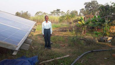 Photo of जशपुरनगर : सेवानिवृत्ति के बाद लोकनाथ राम ने अपनाया आधुनिक कृषि तकनीक : आधुनिक खेती से उत्पादन और आमदनी दोनों में हो रही वृध्दि-लोकनाथ राम