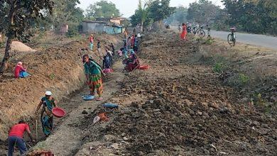Photo of बिलासपुर : मनरेगा में रोजगार देने में बिलासपुर राज्य में अव्वल : लक्ष्य के विरूद्ध 133 फीसदी अधिक मानव दिवस का रोजगार सृजन