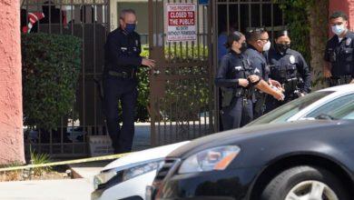 Photo of तीन बच्चों के मृत पाए जाने के बाद मां को किया गया गिरफ्तार