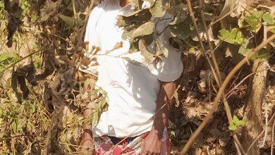Photo of छेलडोंगरी के 50 वर्षीय पुरुष ने की आत्महत्या…जांच में जुटी पुलिस l